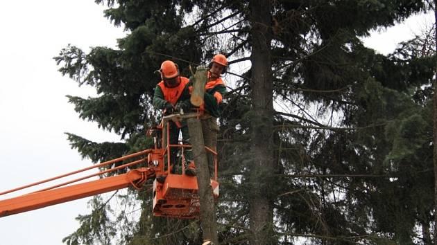 U opravované Mateřské školy Kobzáňova ve Vsetíně došlo ke smýčení sedmi stromů. Odborník u nich totiž odhalil možné nebezpečí pro lidi. Samotné práce obstaraly Technické služby Vsetín.