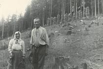 Žně v rubisku (Karolinka-Stanovnica).