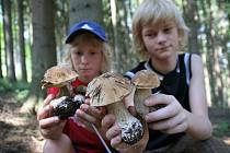 Houby na Valašsku stále rostou. Matouš Tovaryš (vlevo) a Tomáš Novák o ně v lese doslova zakopávali