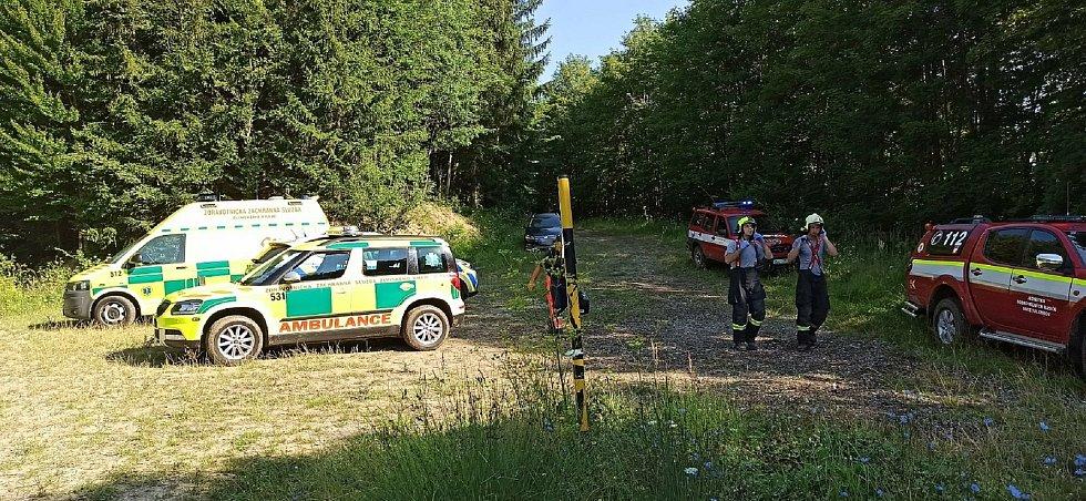 Ve vsetínské místní části Srní zranil v sobotu 8. srpna 2020 padající strom staršího muže.