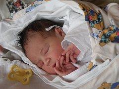 Malá Sára Tvrdoňová narozená 29. února bude narozeniny slavit o den dříve nebo o den později.