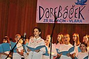 Novoroční koncert kapely Dareband  ve vsetínském Domě kultury