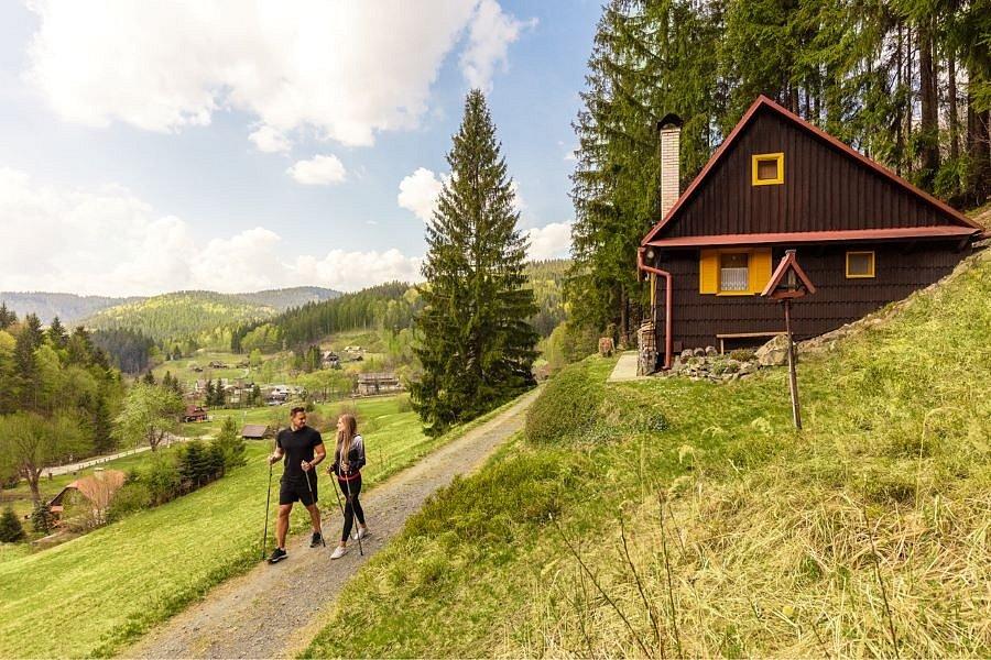Nordic walking u Horalu
