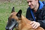 Psi nemohli v době pandemie na cvičáky. Chybí jim socializace. Na snímku Tomáš Václavík s fenou Cho Chang.