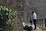 Úklid chodníků od vsetínské Panské zahrady k zámku, od Panské zahrady směrem k průmyslovce a také jejich okolí si při letošním ročníku kampaně Ukliďme Česko vzali na starost žáci ZŠ Trávníky Vsetín; sobota 27. března 2021