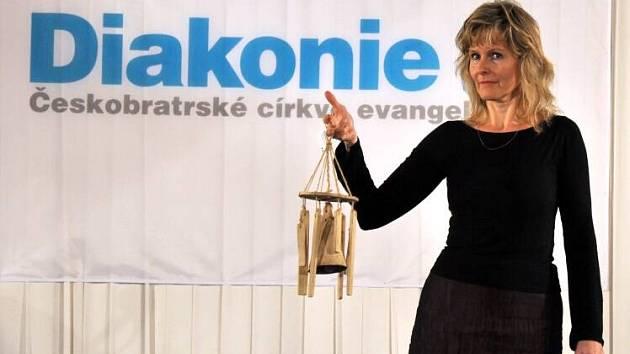 Dobročinnou aukci Domov ve vsetínském zámku pořádala Diakonie Vsetín