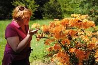 Rozkvetlá zahrada a komentované prohlídky v zámeckém parku v Lešné u Valašského Meziříčí