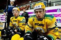 Hokejisté VHK ROBE Vsetín. Ilustrační foto.