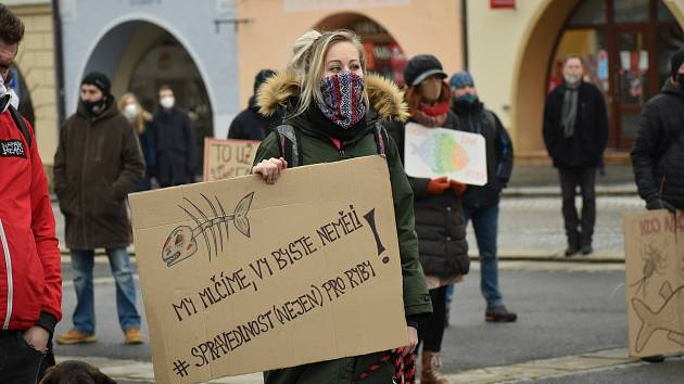 Pochod za Bečvu ve Valašském Meziříčí v lednu 2021
