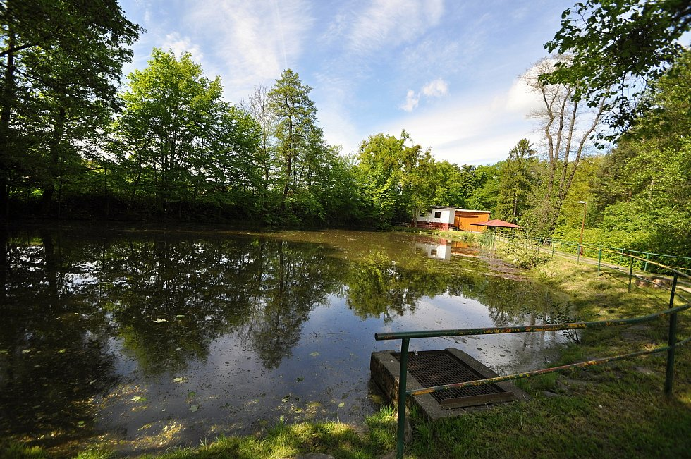 K braneckému zámku přiléhá rozlehlý a pravidelně udržovaný zámecký park. Jeho součástí je i venkovní amfiteátr, rybník a od roku 2020 i nové dětské hřiště.