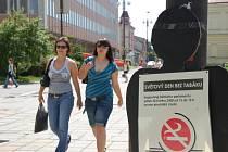 Jako připomínku Dne bez tabáku rozmístili členové vsetínského dětského parlamentu před radnicí několik figurín znázorňujících kuřáky a rozdávali informační letáky