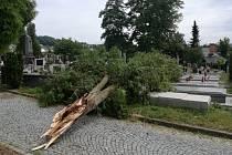 Strom na vsetínském hřbitově pokácený během bouřky silným větrem