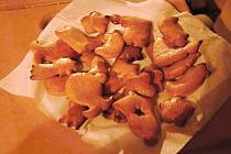 Tradiční předvánoční pečení vánoček a perníčků v Schlattauerově kavárně v Moravské gobelínové manufaktuře ve Valašském Meziříčí; čtvrtek 21. prosince 2017