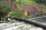 Dobrovolní hasiči z Chvalčova likvidují v pátek 19. června 2020 strom, který po pádu zatarasil silnici.