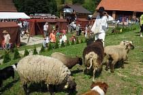 V Prlově se v sobotu 13. července 2013 uskutečnil 7. Ovčácký den. Tradiční akce je zaměřená na pastevectví a chov ovcí, také zpracování vlny a jehněčího masa. Její součástí jsou folklorní vystoupení i ukázky tradičních řemesel.