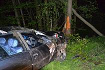 Opilý mladík nezvládl v sobotu večer rychlou jízdu a narazil do stromu.