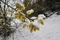 Zimní počasí na Soláni na Horním Vsacku v úterý 13. dubna 2021.