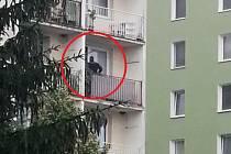 Na vsetínském sídlišti Sychrov se v úterý 21. července 2020 střílelo. Policista prohledává balkon v domě č.p. 71, odkud výstřel zazněl.