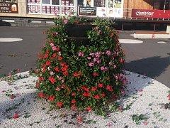 Poničená květinová fontána s muškáty na náměstí Svobody ve Vsetíně; pondělí 13. června 2016