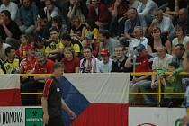 Fanoušci v Zubří se mohou těšit na reprezentaci.
