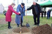 Lidickou hrušeň vysadili ve středu 28.11.2018 na zahradě ZŠ Žerotínova ve Valašském Meziříčí. Aktu se zúčastnili potomci lidických žen Antonín Nešpor s manželkou a Miroslav Kaliba (vpravo).