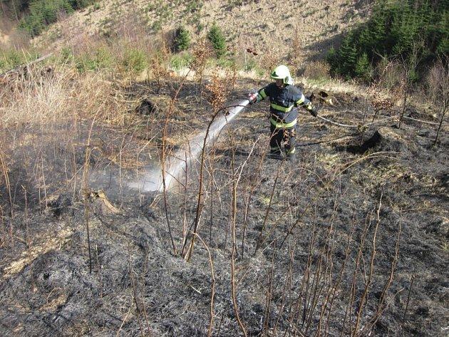 Požár lesa u Hovězí.