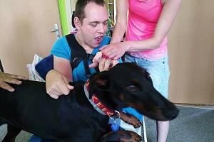Akci Týden s Nadějí zahájil v pondělí 17. června 2019 program pro prvňáčky ze ZŠ Sychrov v denním stacionáři na Sychrově. Canisterapii s cvičenou fenkou Olinkou si vyzkoušel také klient Honza.