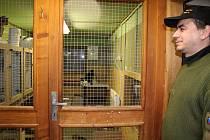 Do útulku pro zvířata ve Vsetíně se nikdy nijak zvlášť neinvestovalo. Nutné opravy dělali pouze formou údržby samotní pracovníci útulku v čele s vedoucím Jakubem Hábou (na snímku). Nyní by se to mělo změnit.