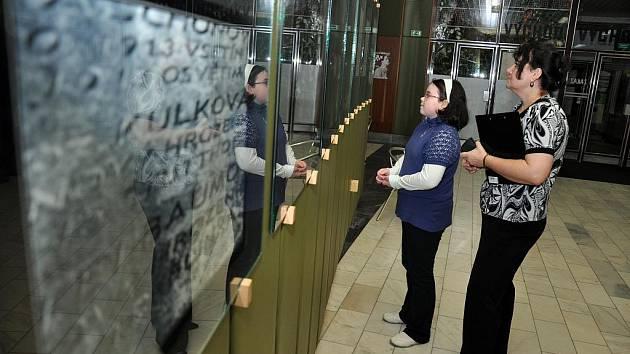 Ve vsetínském kině Vatra se v úterý 25. ledna konala vernisáž fotografií s tématem Holocaustu. Byla součástí komponovaného programu, který při připomínce Mezinárodního dne obětí Holocaustu v kině probíhal