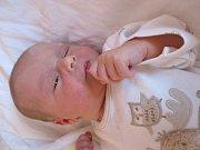 Řezníková Julie z Nového Jičína, narodila se 8.6.2016 s mírami 3120g/50cm