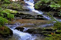 Zurčící potok