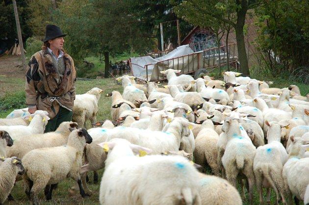 Chovatel Vojtěch Molek uvažuje o zpřístupnění své farmy agroturistům