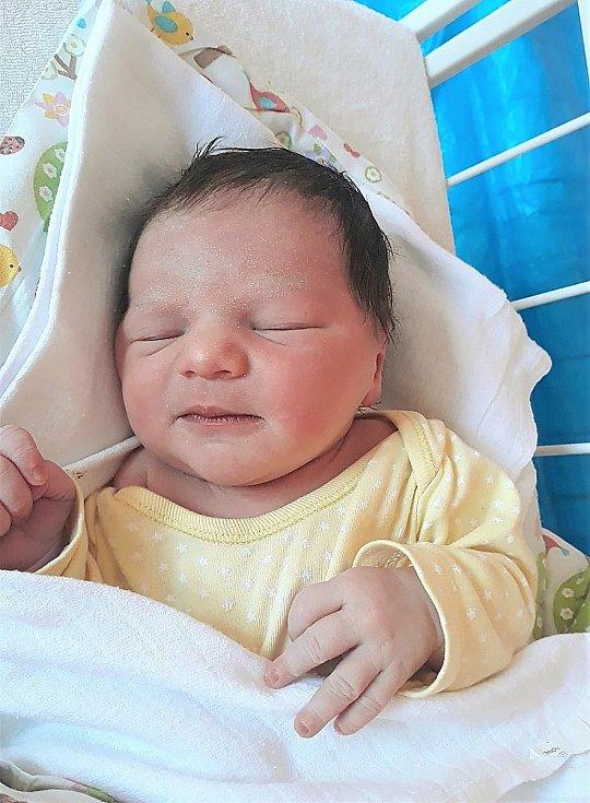 Stella Hloušková, Valašské Meziříčí, narozena 4. dubna 2021 ve Valašském Meziříčí, míra 51 cm, váha 3530 g