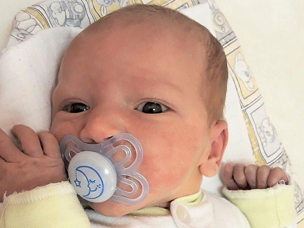 Mikuláš Rada, Mořkov, narozen 31. ledna 2021 ve Valašském Meziříčí, míra 52 cm, váha 3700 g
