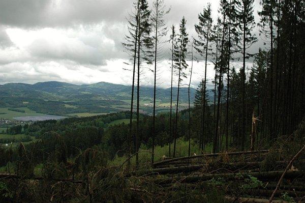 Škody na lesních a parkových porostech napáchal silný vítr koncem minulého týdne taky ve Valašském Meziříčí.