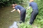 V rožnovském potoce Kněhyně uhynuly ryby. Na místě zasahovali hasiči i chemici