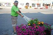 Daniel Číp ze střediska zeleně společnosti Městské lesy a zeleň Valašské Meziříčí zalévá ve středu 1. srpna 2018 květiny a keře v centru města.