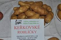 Keřkovské rohlíčky charakterizuje vynikající konzumní hodnota. Jde brambory varného typu A-A/B.