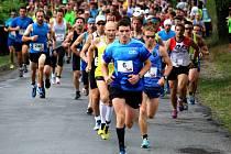 První ročník absolvovala necelá padesátka účastníků, na startu druhého podniku stálo již zhruba 120 lidí. Na třetí ročník vyběhlo asi 180 závodníků, vloni 260 běžců v dospělé kategorii a letos se již pod sochou K. H. Borovského tísnilo 373 účastníků.