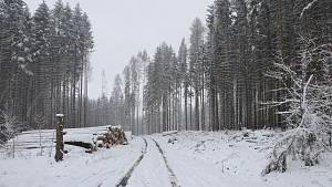 Sněžení na Vysočině.