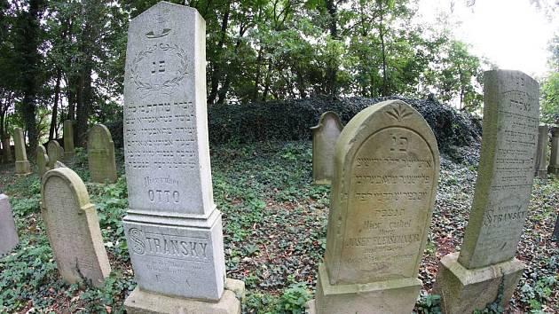 Cenné pohřebiště je majetkem pražské židovské obce.