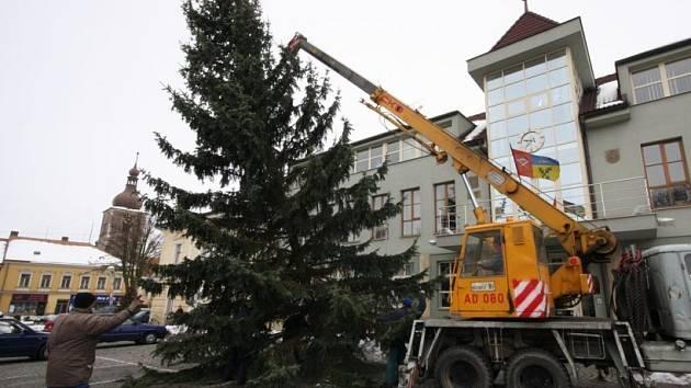 Vánoční strom bude před radnicí stát až do Tří králů roku 2008.