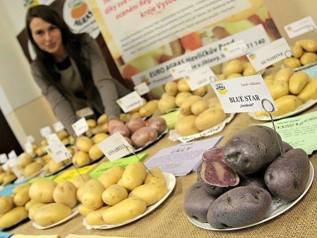 Součástí konference Brambory 2015 byla i výstava celé řady odrůd brambor, které u nás farmáři pěstují. Společnost Medipo Agras HB představila například i fialové švestkové brambory odrůdy Blue Star.