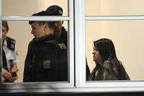 Ze závěru znaleckých posudků duševního stavu šestadvacetileté Orlové je zřejmé, že v době spáchání činu nebyla při smyslech. Podle krajské policejní mluvčí Dany Čírtkové byla žena propuštěna z vazební věznice v Brně a přemístěna do zdravotnického zařízení