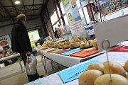 Polní den o bramborách
