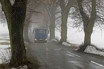 I přes velké množství stížností řidičů na to, že jsou stromy u Žižkova Pole nebezpečné, skáceny nebudou. Lidem vadí hlavně kořeny nadzdvihávající krajnici a také to, že se zde dvě auta jedoucí proti sobě nevyhnou.
