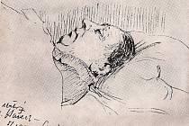 """Posmrtná skica. """"Mrtvý ležel na holém stole v dolní místnosti. Jako čestná stráž seděl tu malíř Panuška s lahví koňaku a črtal si ve svém skicáku posmrtný portrét,"""" napsal Haškův životopisec Radko Pytlík. Skica byla pořízena 5. ledna 1923."""