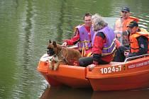 Před polednem vyjel za Havlíčkovým Brodem proti proudu řeky člun s kynology. Opakovaně bude projíždět zhruba dvoukilometrový úsek. Pokud by dva psi nezávisle na sobě označili určité místo, nastoupí do akce potápěči.