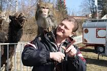 Cirkus Bernes v Havlíčkově Brodu.