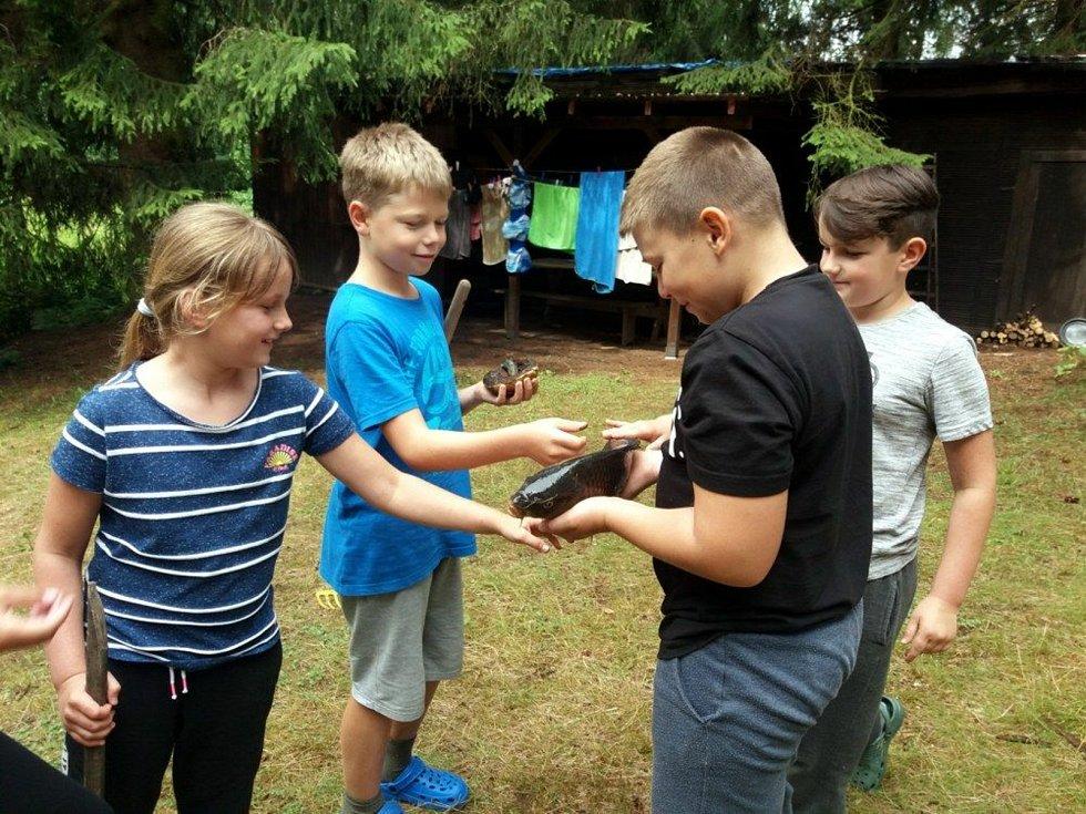 Letní tábory nabídnou dětem rozptýlení po době covidového stresu. Většina je už plná.